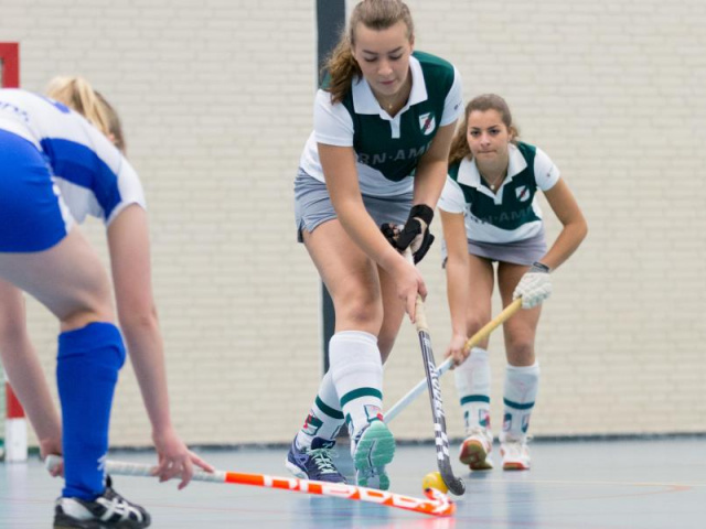 Zaalhockey - Shinty